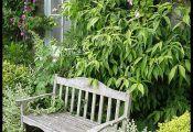 Небольшой уютный сад