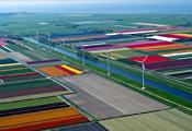 Поля Голландии