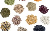 Подскажите какие семена заказать из Испании?