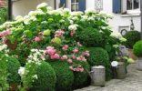 Коттеджный сад – не пейзажный и не кантри