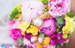 Цветы под защитой биологических фунгицидов