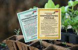 Как защитить рассаду от болезней?