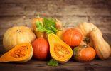 8 правил большого урожая тыквы