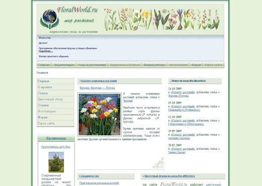 Скриншот сайта floralworld.ru