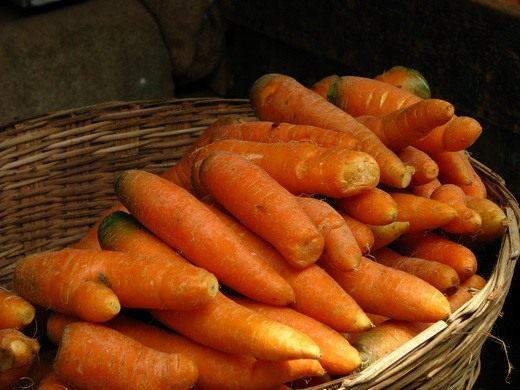 Как сохранить урожай? Морковь