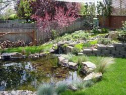 Водоем можно устроить в виде ручья впадающего в пруд