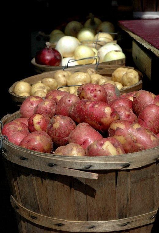 Как сохранить урожай? Картофель, Лук.