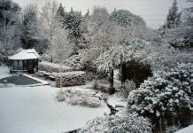 12 советов садоводам в январе