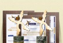 Наши награды и дипломы с Золотого сайта 2009