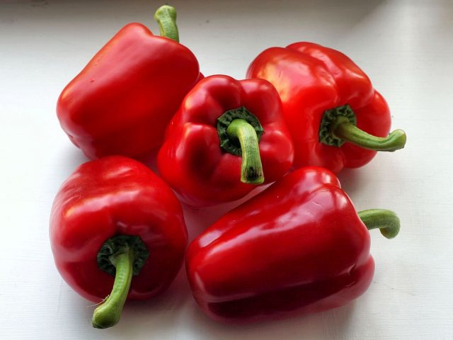 Перец овощной (Capsicum annuum)