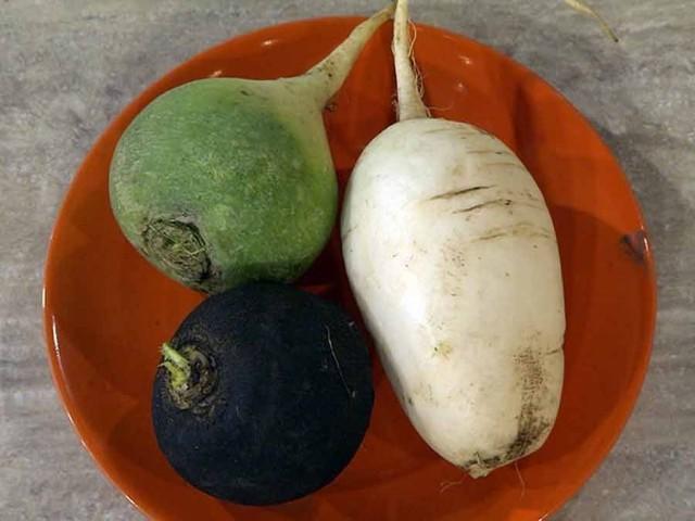 Редька: черная, зеленая и белая