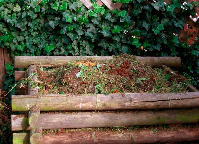 При производстве собственного садового компоста отпадает необходимость жечь отходы садовой обрезки, старые листья, бумагу, упаковку и картон