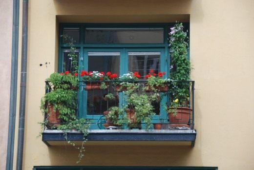 Цветы на балконе. украшение цветами. какие растения подобрат.
