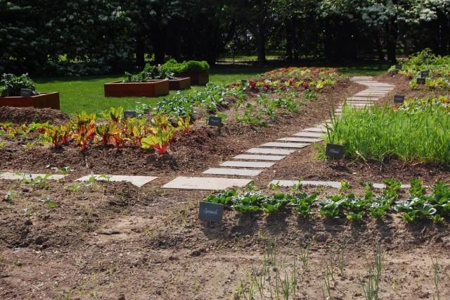 Планируя огород, выясните, когда можно ожидать последнего весеннего заморозка и первого осеннего заморозка