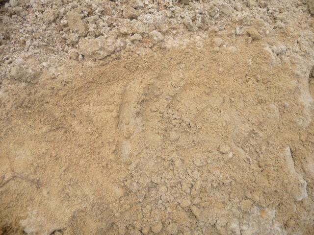Супесчаная почва (Sandy loam)