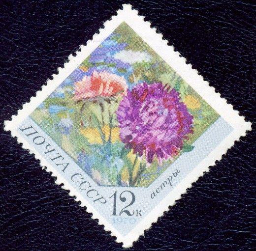 Почтовая марка СССР. 1970г. Астры