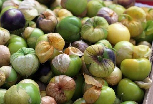 Томатилло или физалис овощной