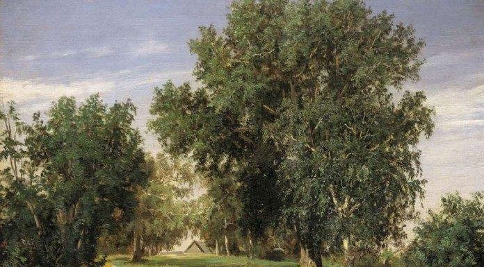 С. Н. Аммосов, Лесная поляна. 1869г.