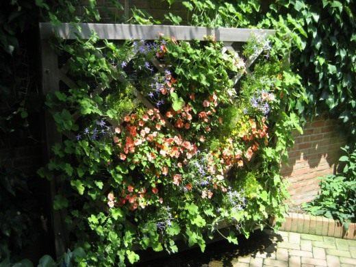 Панно из цветущих растений