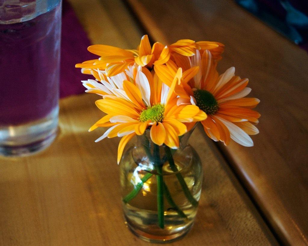 Выращивание цветов в вазах