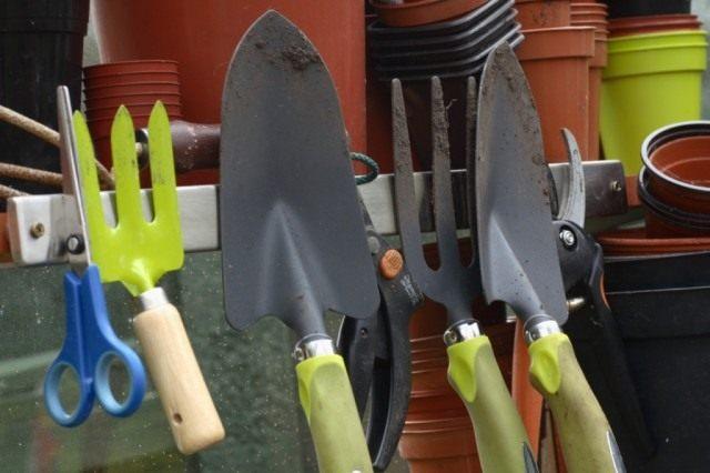 Правильный подход к выбору инструментов для работы в своем саду