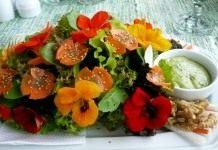Настурция: хороша и для сада, и для салата