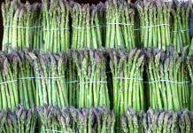 Этот великолепный овощ – спаржа