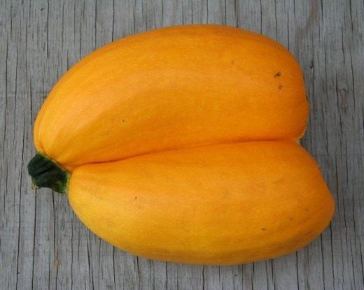 Цукини (Zucchini)