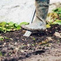 Перекапываем землю в месте посадки роз