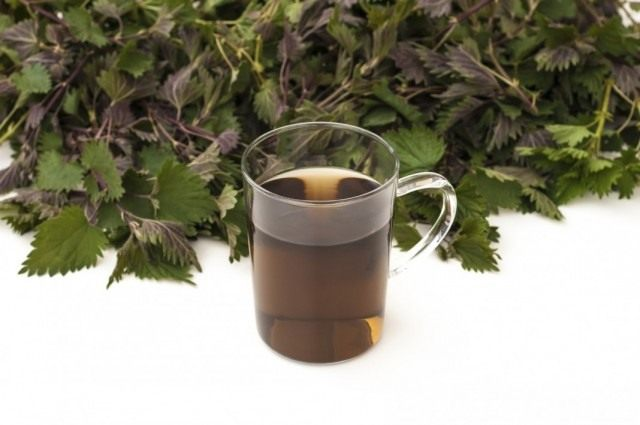 Сорняковая болтушка, или травяной чай для удобрения и подкормки растений