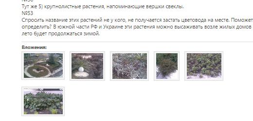 Файлы изображений добавлены как вложения к сообщению