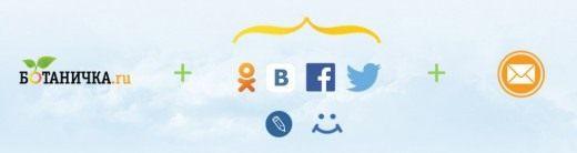 Реклама на сайте, в сообществах проекта в социальных сетях и e-mail дайджесте