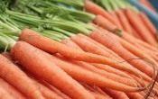 Как посеять морковь под зиму?