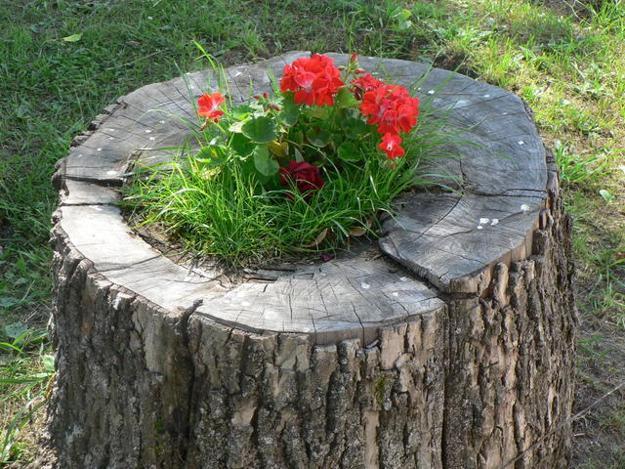decorated-tree-stump-003