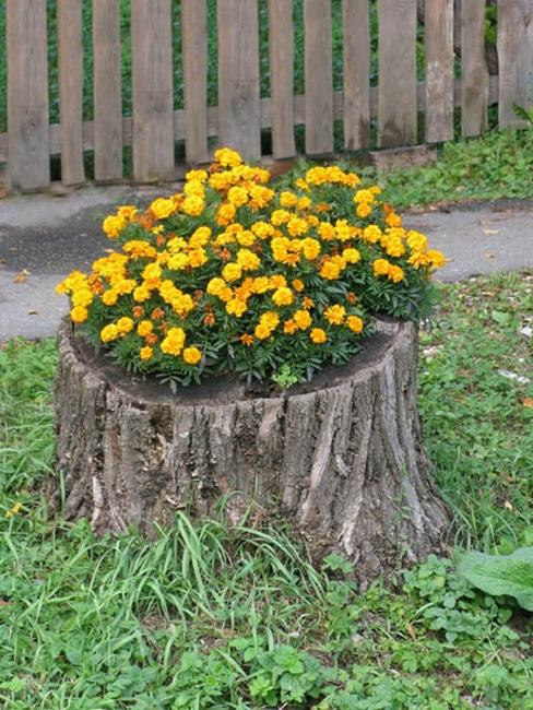 decorated-tree-stump-006