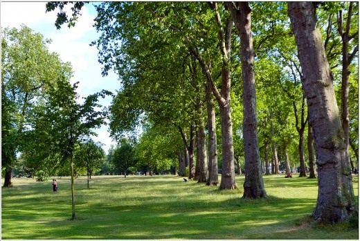 Лондон, Королевский Гайд-парк (Hyde Park)
