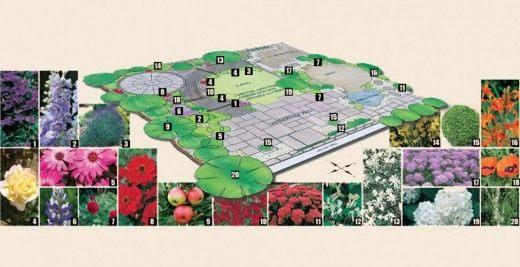 Дендрологический план-схема участка