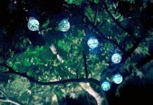 Ночной сад, украшенный солнечными светильниками