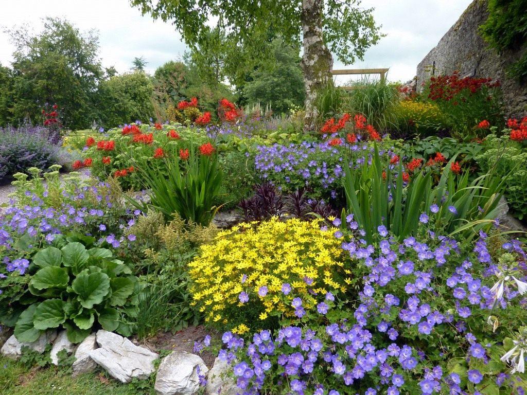 Картинки сад и огород своими руками фото 564