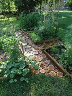 Распиленные бревна, можно использовать для оформления тропинок