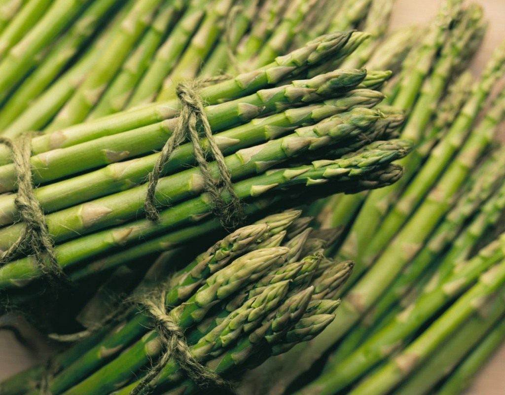 Спаржа как вырастить экзотический овощ