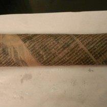 Черенки роз завернутые в газету, метод Буррито