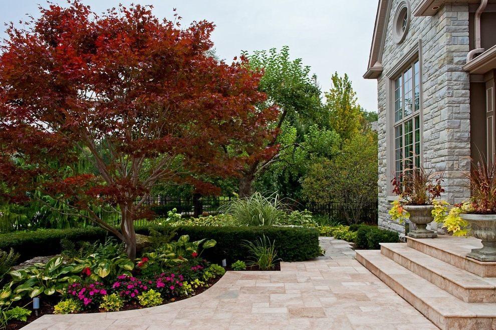 Композиции с рябиной дизайне сада Рябина обыкновенная - Целебные плоды и ягоды. Florets