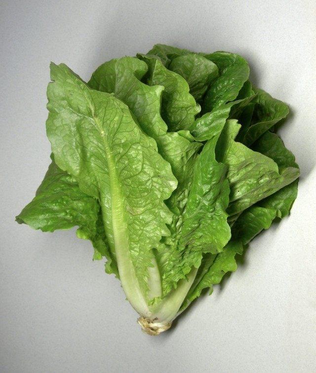 Ромен-салат