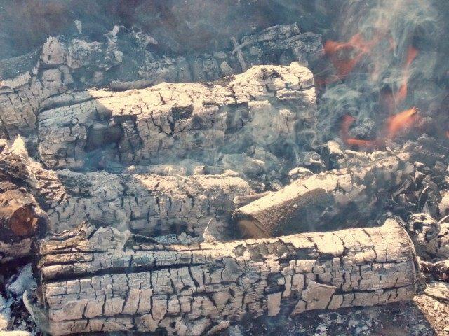 Готовим угли для шашлыка