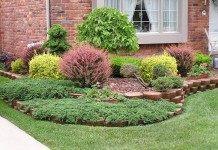 Мини-группы из деревьев и кустарников в дизайне сада