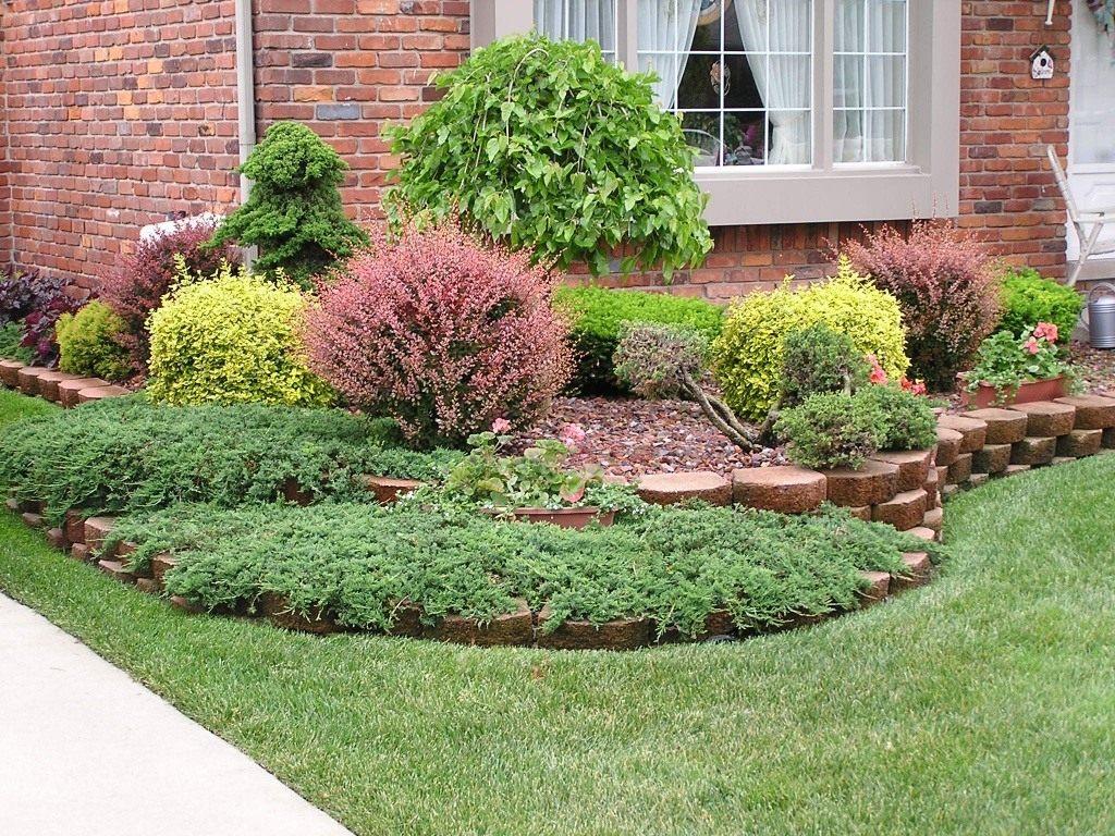 Деревья и кустарники в ландшафтном дизайне сада