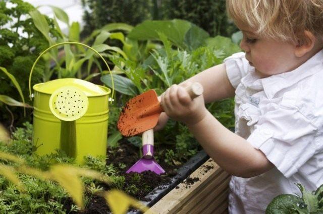 Огород для малышей