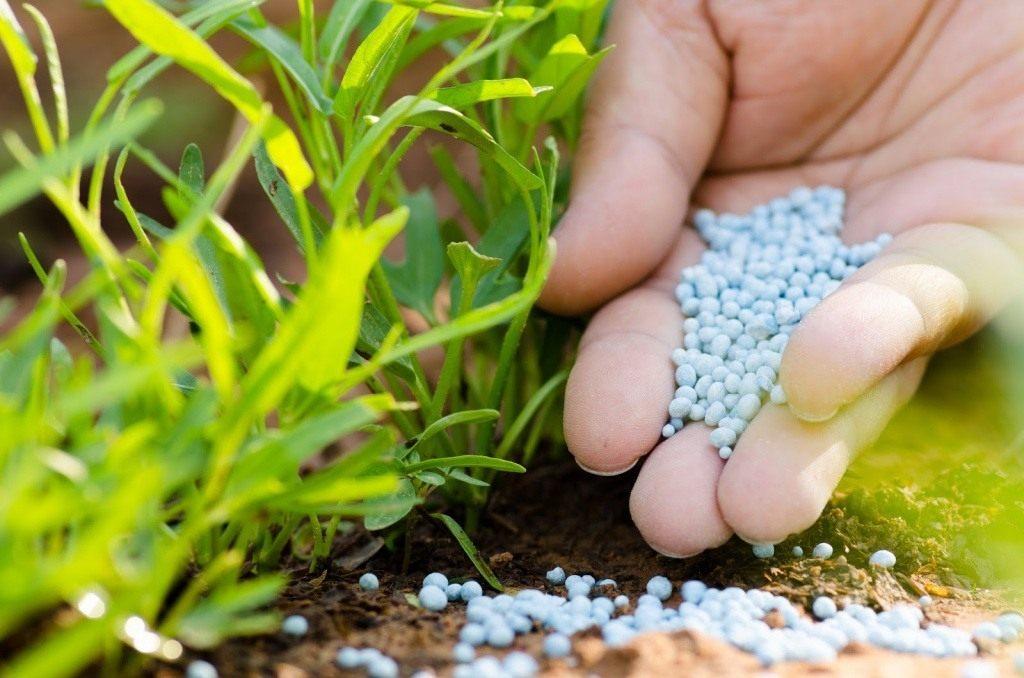 Смоленские аграрии получат более 1,2 тыс. тонн минеральных удобрений