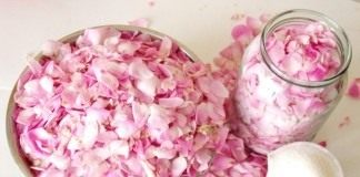 Ингредиенты для приготовления розовых лепестков в сахаре
